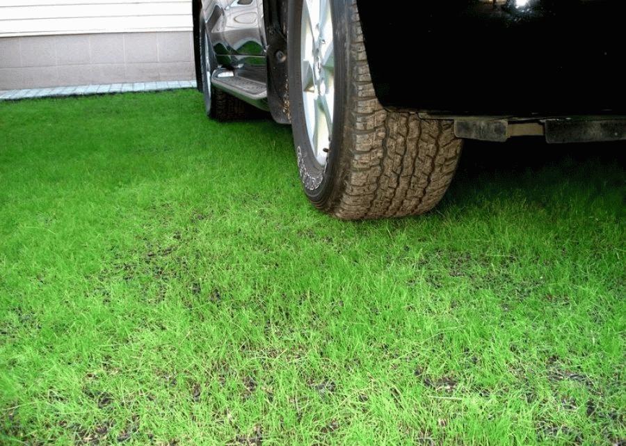 Намереваясь оспорить штраф за парковку на газоне, необходимо найти законные основания, согласно которым штраф не имеет основания